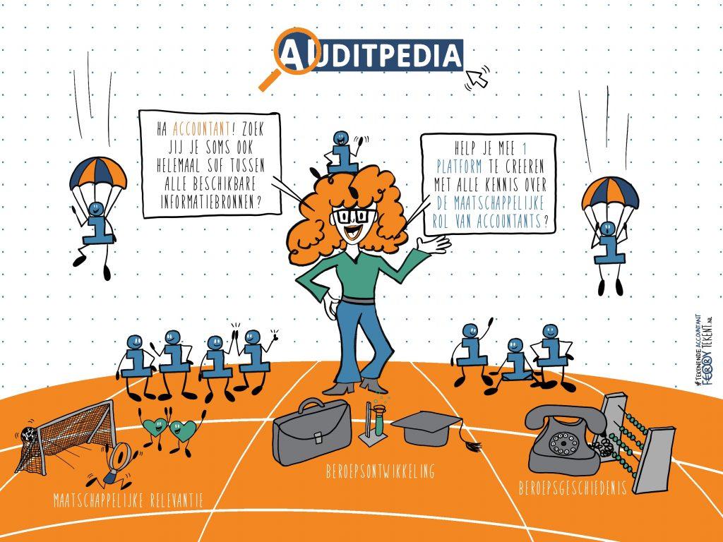 Auditpedia.nl